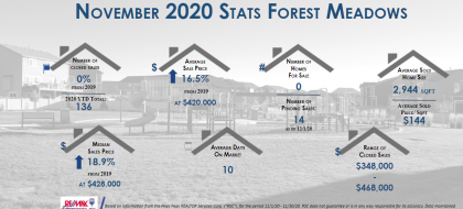 Forest Meadows Real Estate Stats November 2020