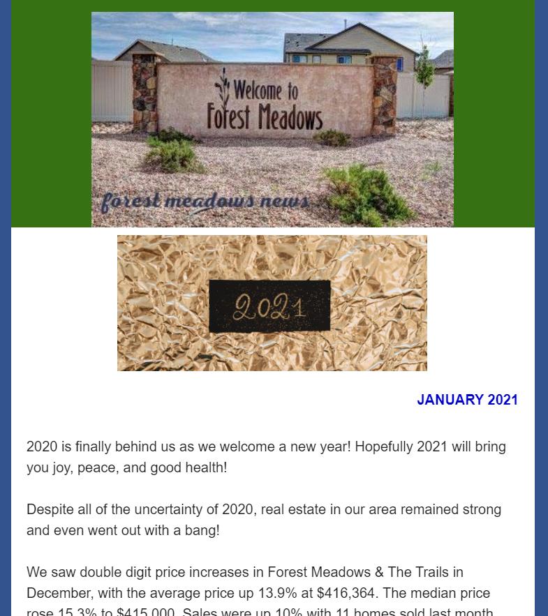 FM preview Jan 2021